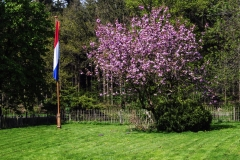 Huize Oude Willem